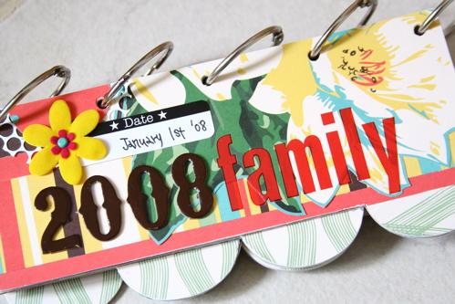 01_11_a: 2008 Family